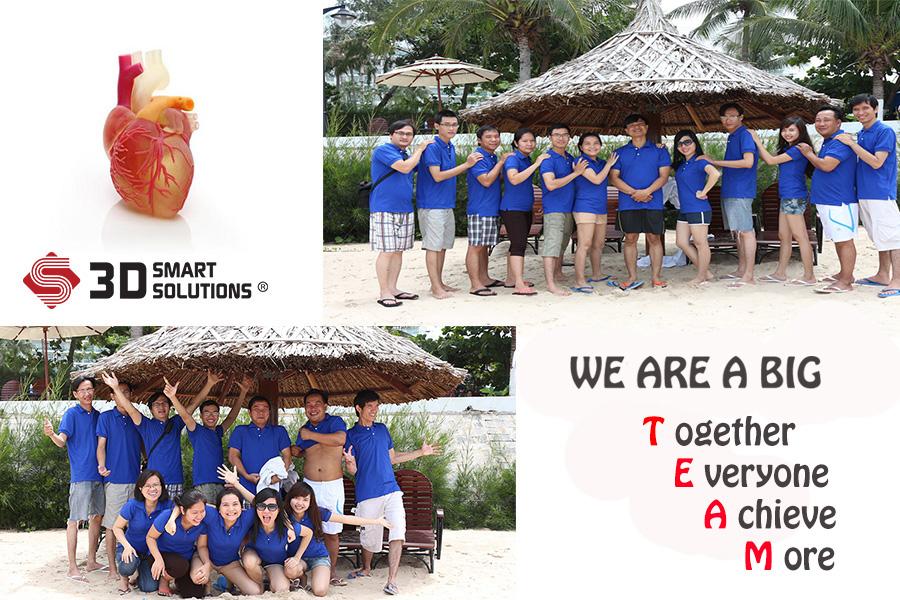 Team-3DSS
