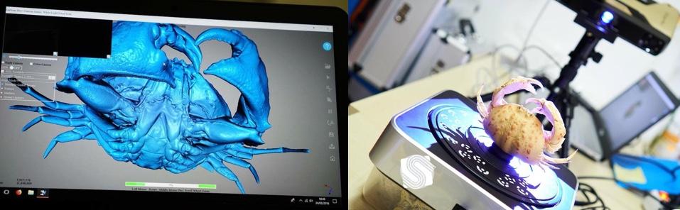 Dịch vụ Scan 3D